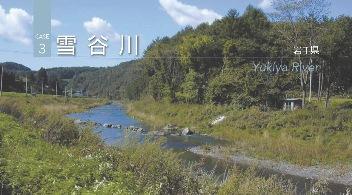 2011J03_yukiya.jpg