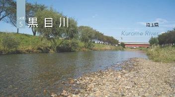 2011J05_kurome.jpg