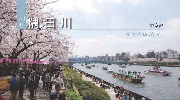 2011J08_sumida.jpg